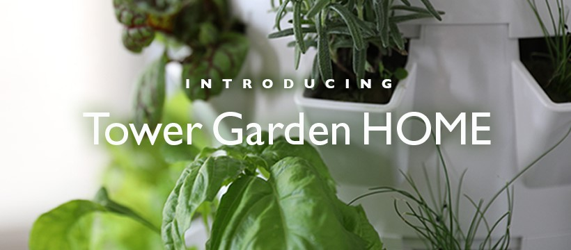 Tower Garden Grow Food At Home